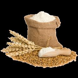 Flour-PNG-Photo